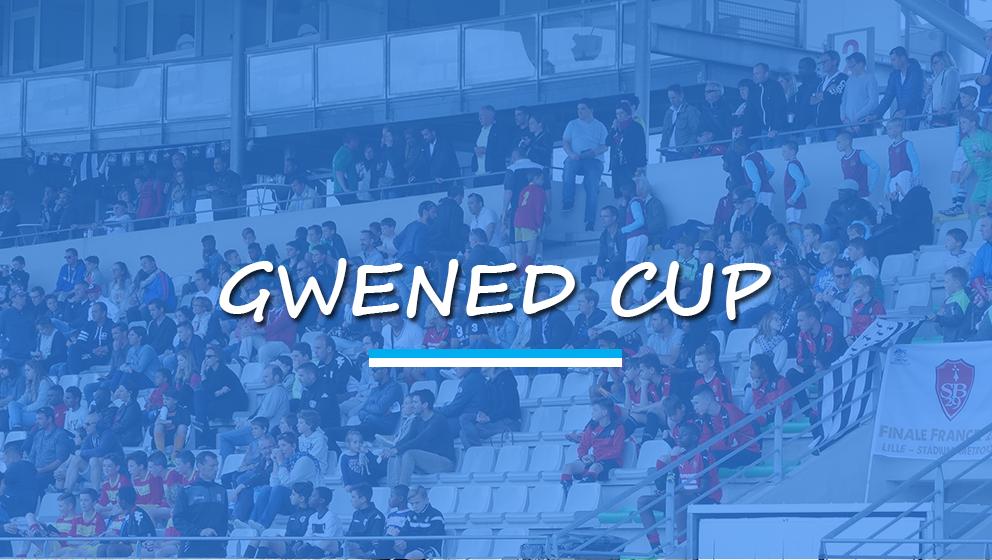 gwenedcup
